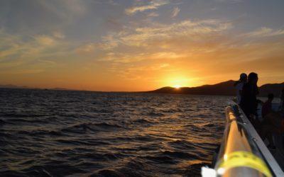 Katfish Sunset Cruise